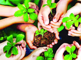tree plantation is a way of take care of yourself.