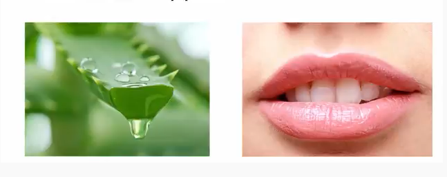 use aloe vera for bright lips