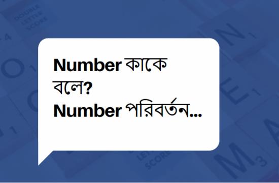 Number কাকে বলে? Number কত প্রকার ও কি কি?